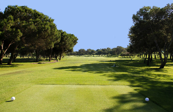 Real Club de Golf de Sotogrande Golf Course-6002