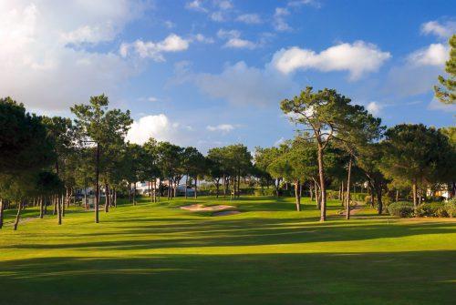 Pinheiros Altos Golf Course-15899