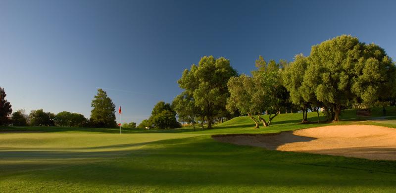 Pestana Alto Golf Course-8182