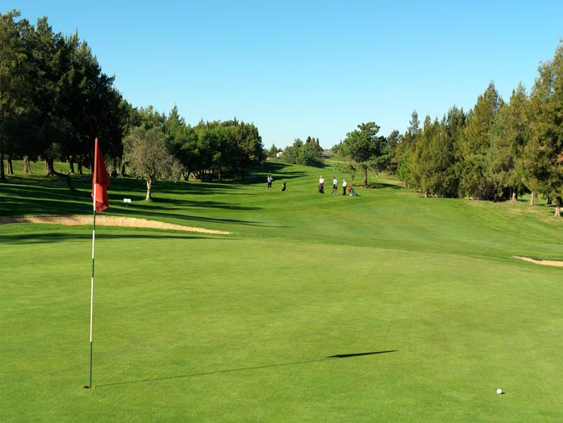 Pestana Alto Golf Course-8183