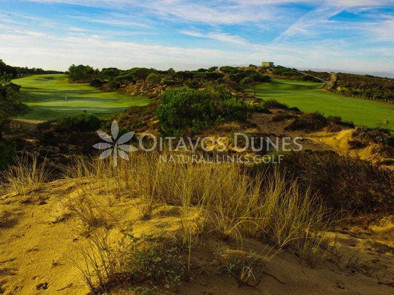 Oitavos Golf Course-8838