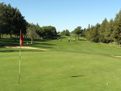 Pestana Alto Golf Course-8179