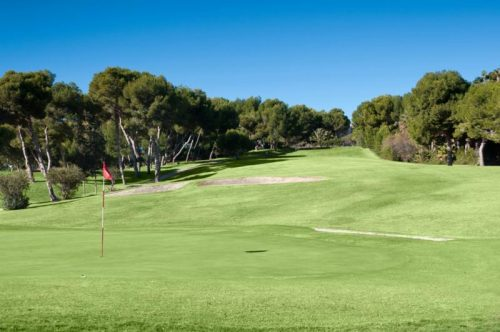 Golf Villamartin Golf Course-7017