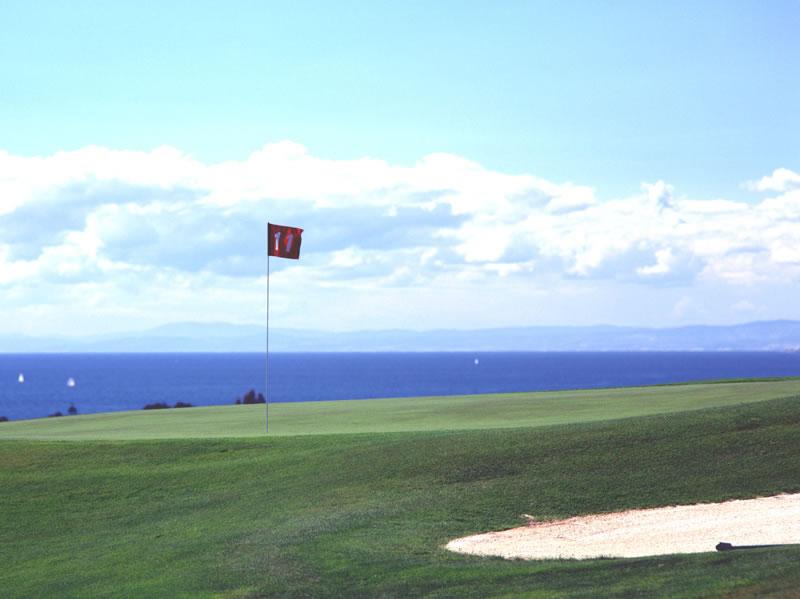 Santa Clara Marbella Golf Course-6399