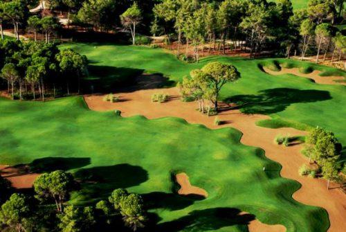 Sueno Pines golf course-10735
