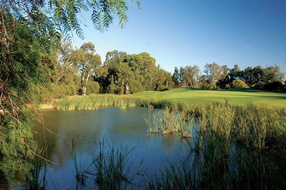 Penina Golf Course-15811
