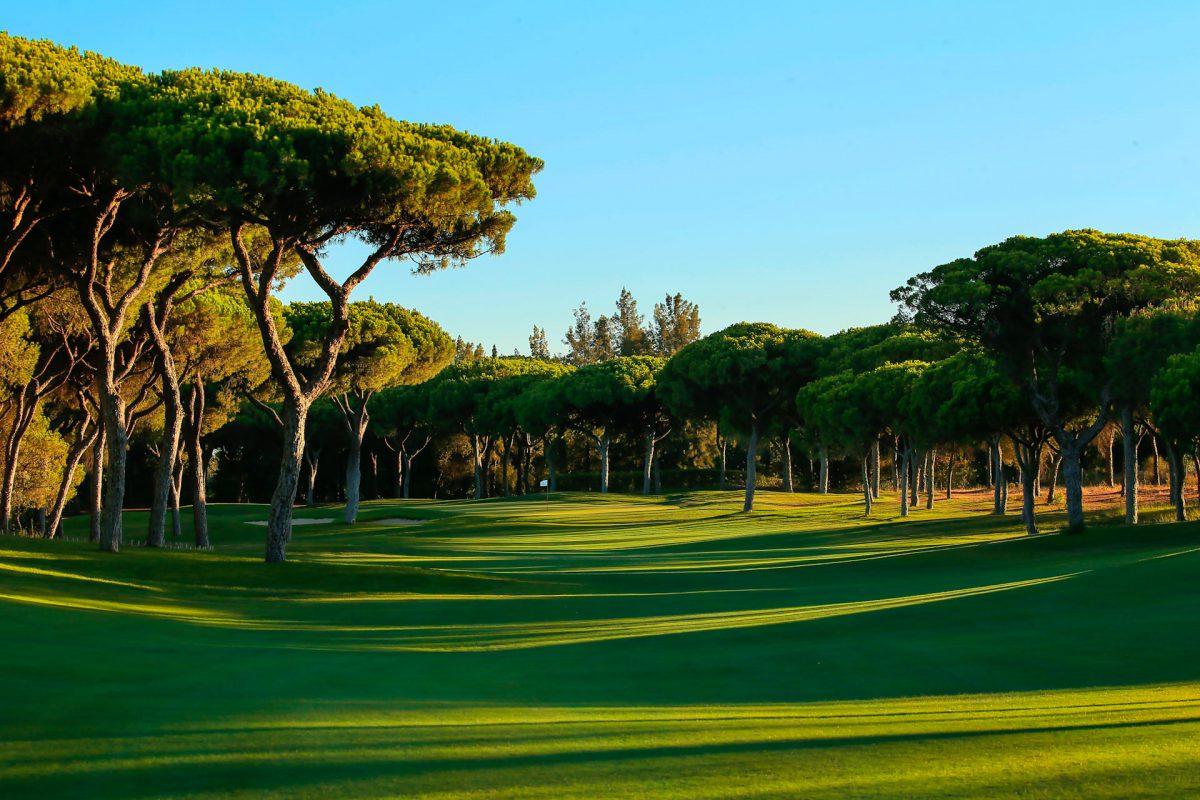 Millennium Golf Course-16226
