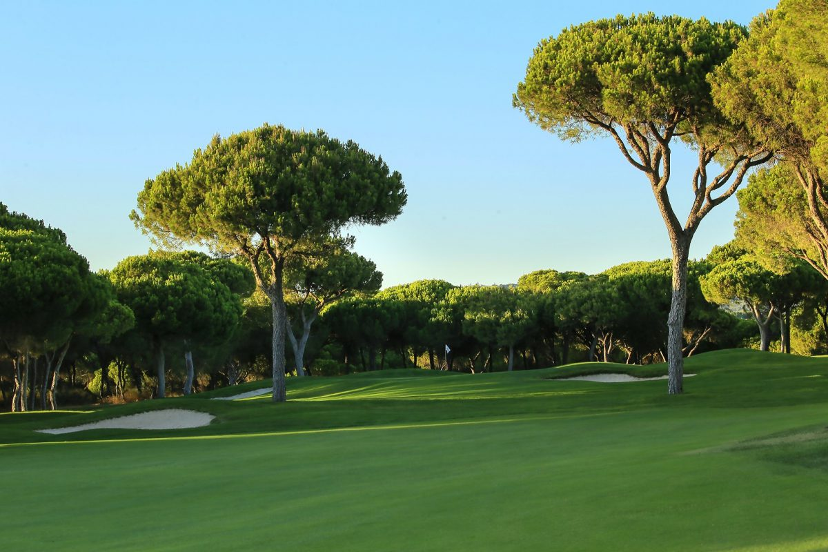 Millennium Golf Course-16223