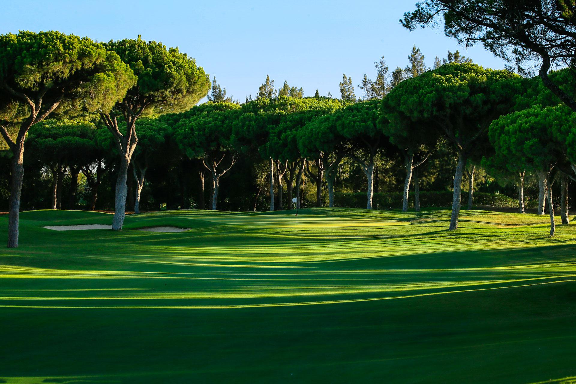 Millennium Golf Course-16224