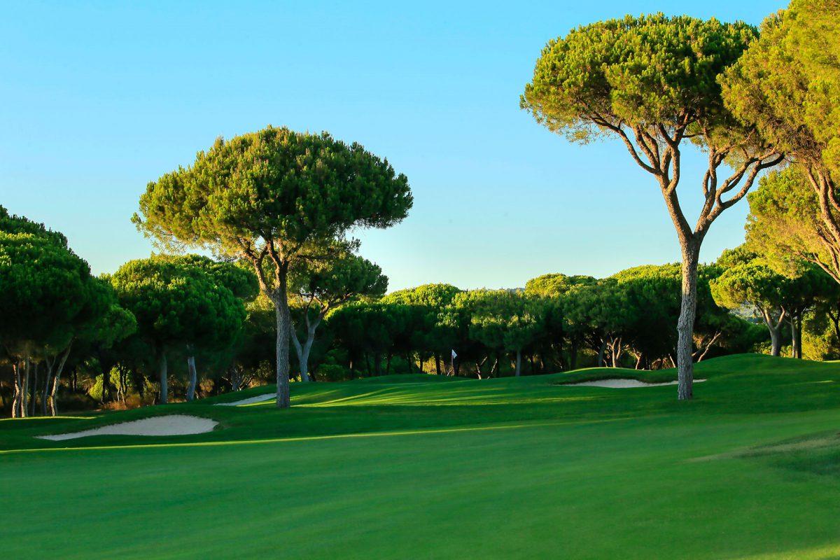 Millennium Golf Course-16225