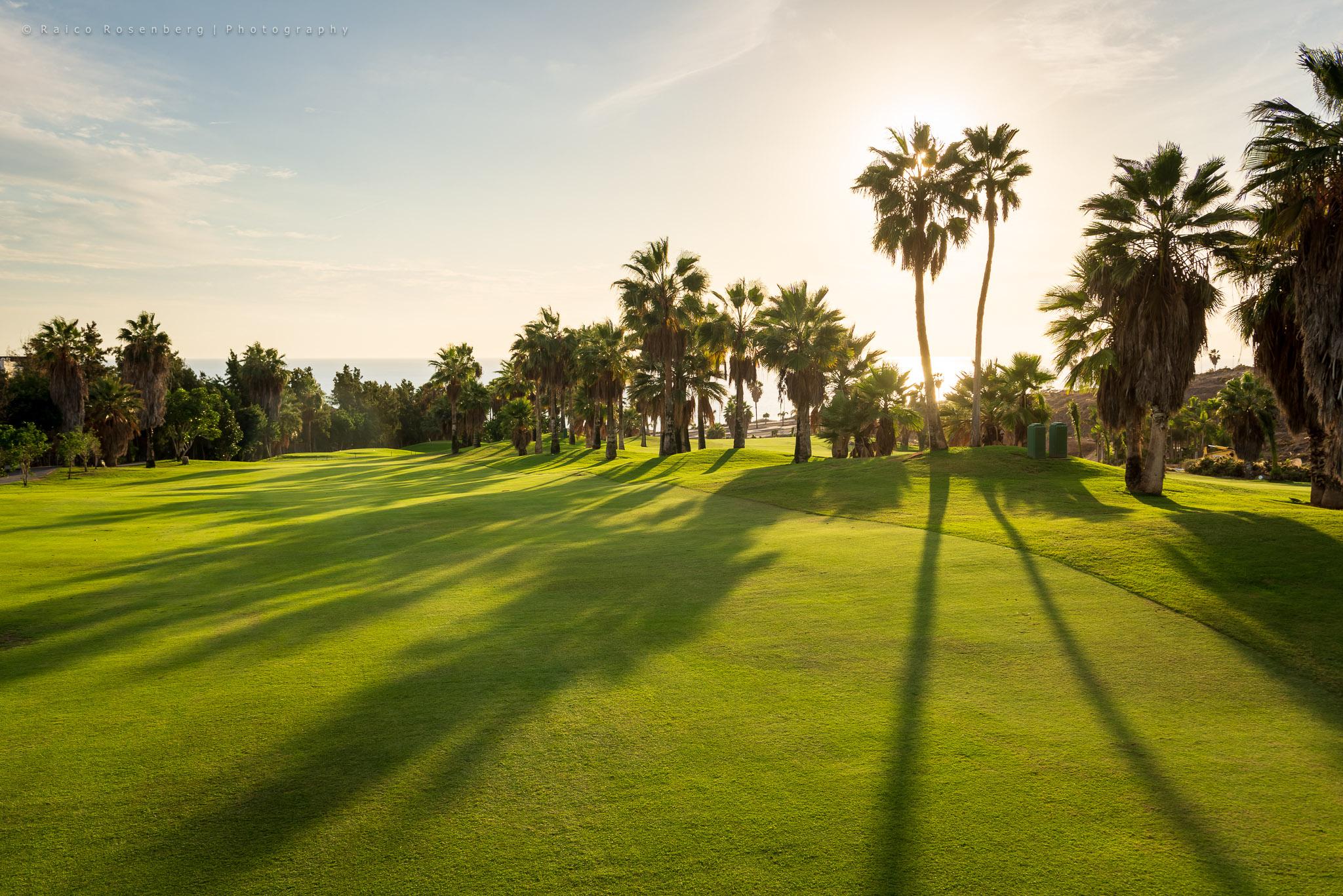 Costa Adeje Golf Course-17260