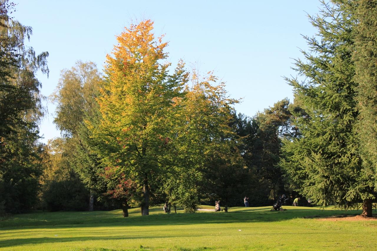 Royal Golf Club du Hainaut-9286