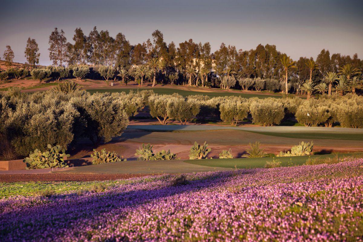 Assoufid Golf Course-15998