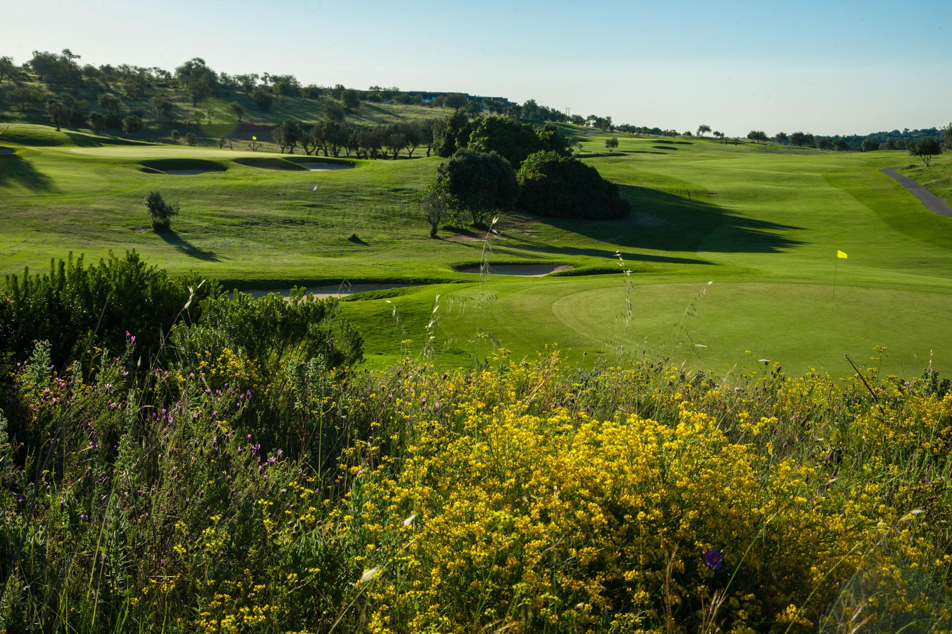 Morgado Golf Course-16901