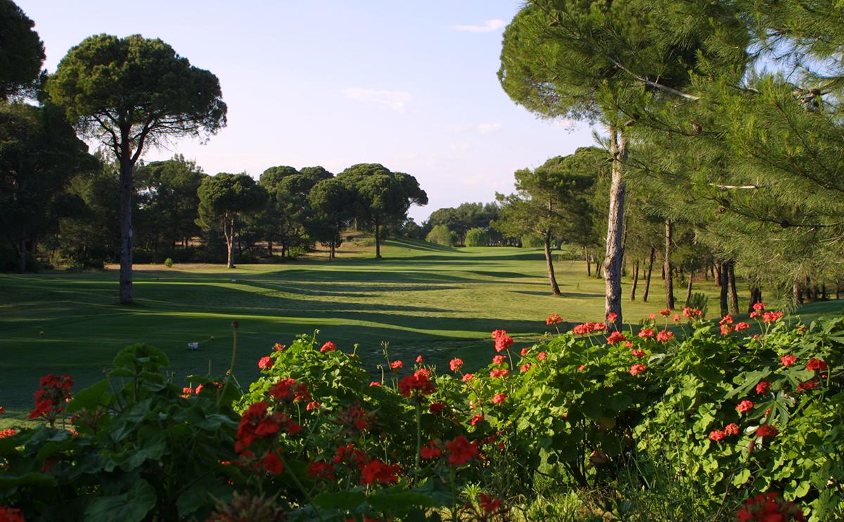 National Golf Club-17017