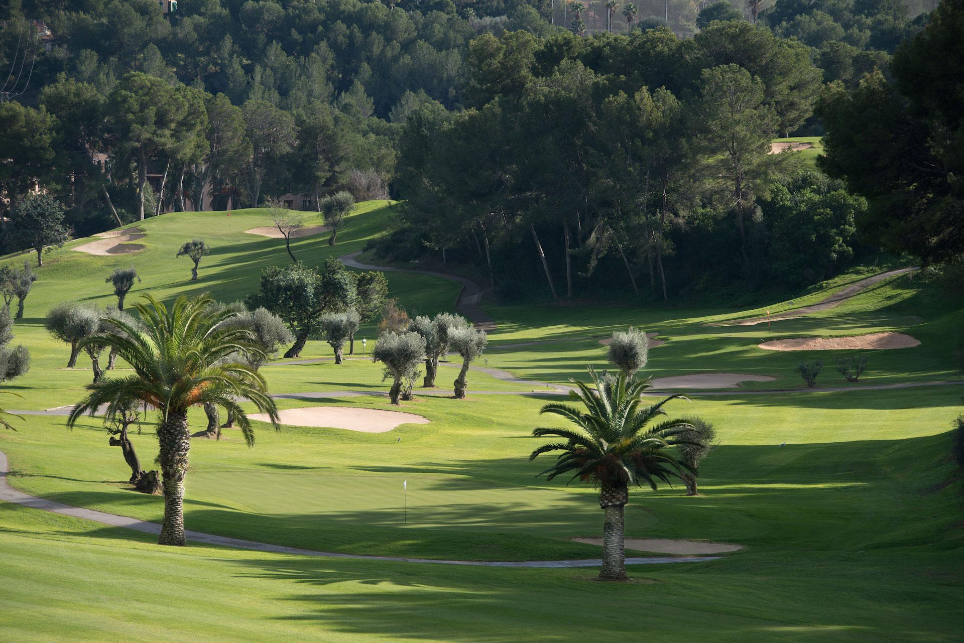 Real Golf de Bendinat Golf Course-16404