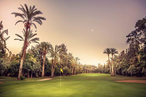 Royal Golf de Marrakech Golf Course-16094
