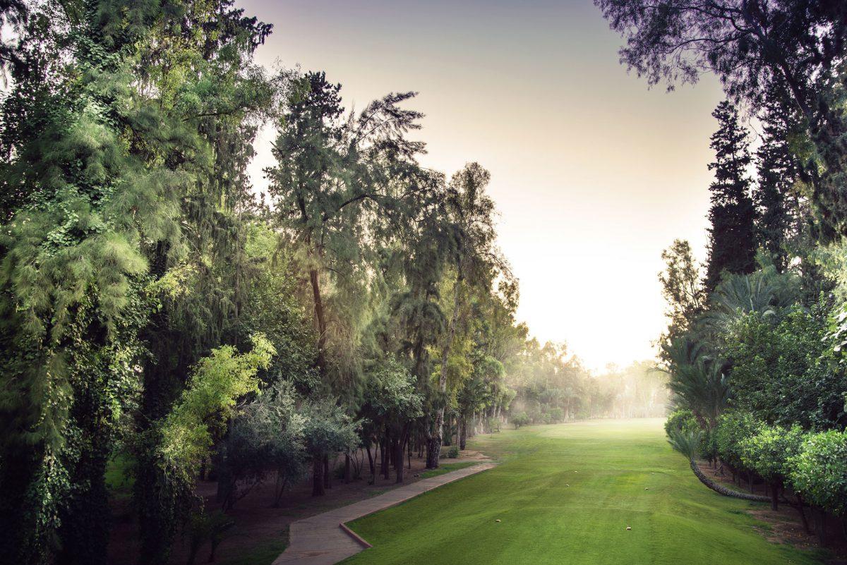 Royal Golf de Marrakech Golf Course-16100