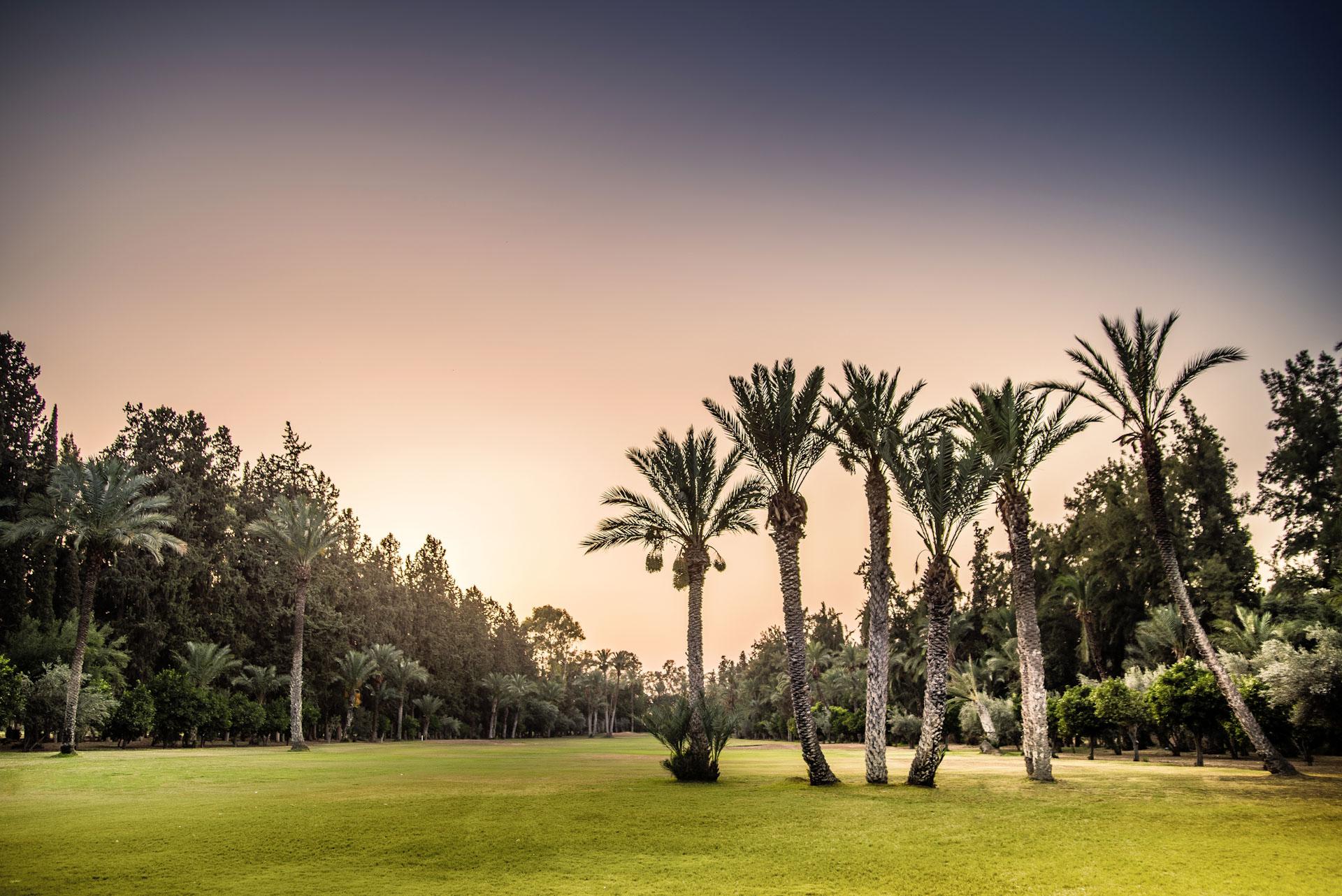 Royal Golf de Marrakech Golf Course-16101