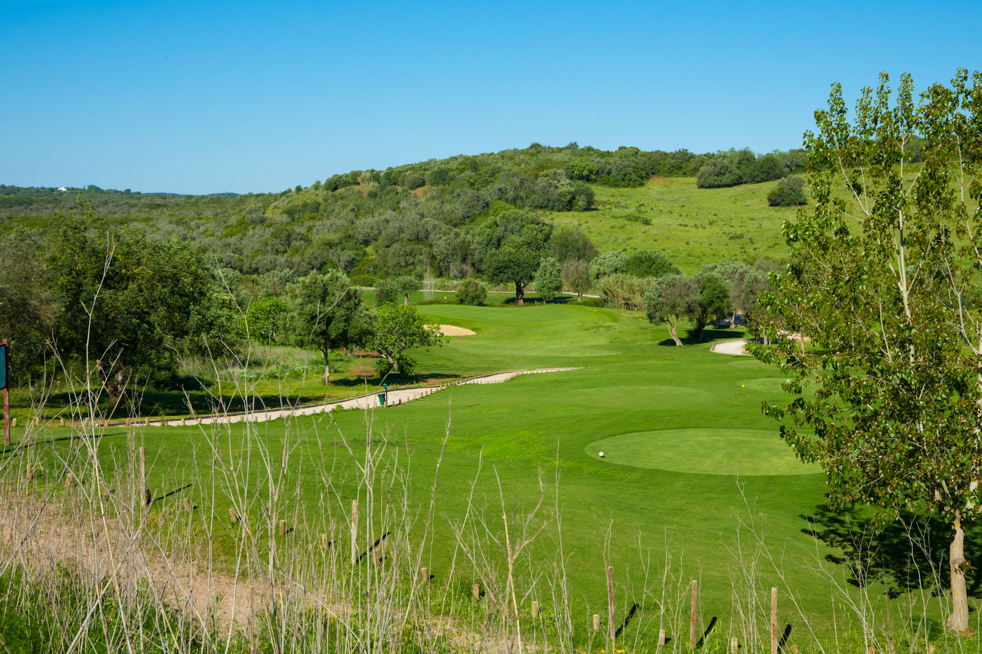 Alamos Golf Course-15889