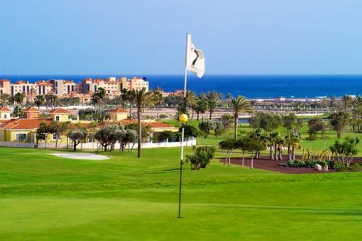 Fuerteventura Golf Club-16484