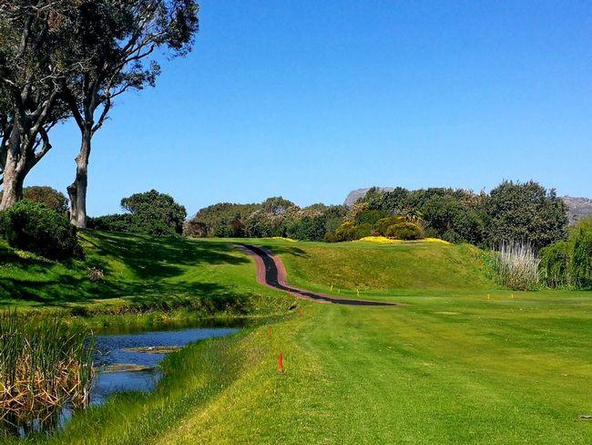 Clovelly Golf Club-16637