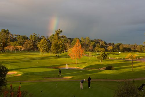 Stellenbosch Golf Club-0
