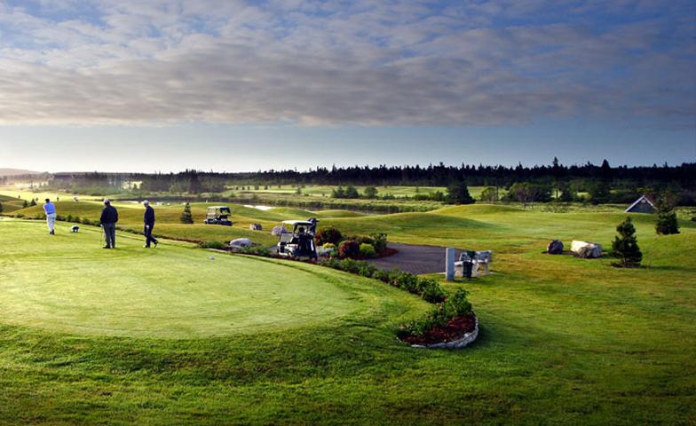 Clovelly Golf Club-16644