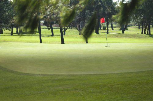 Royal Cape Golf Club-16621