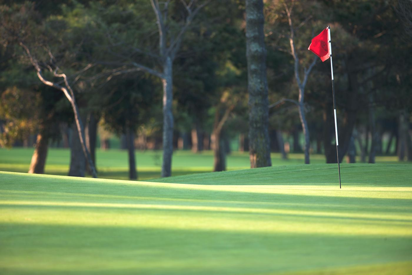 Royal Cape Golf Club-16625