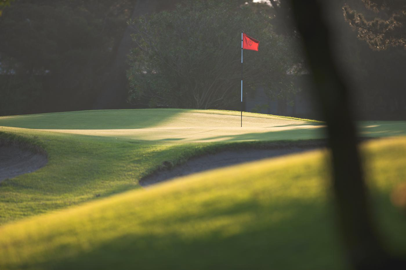 Royal Cape Golf Club-16626