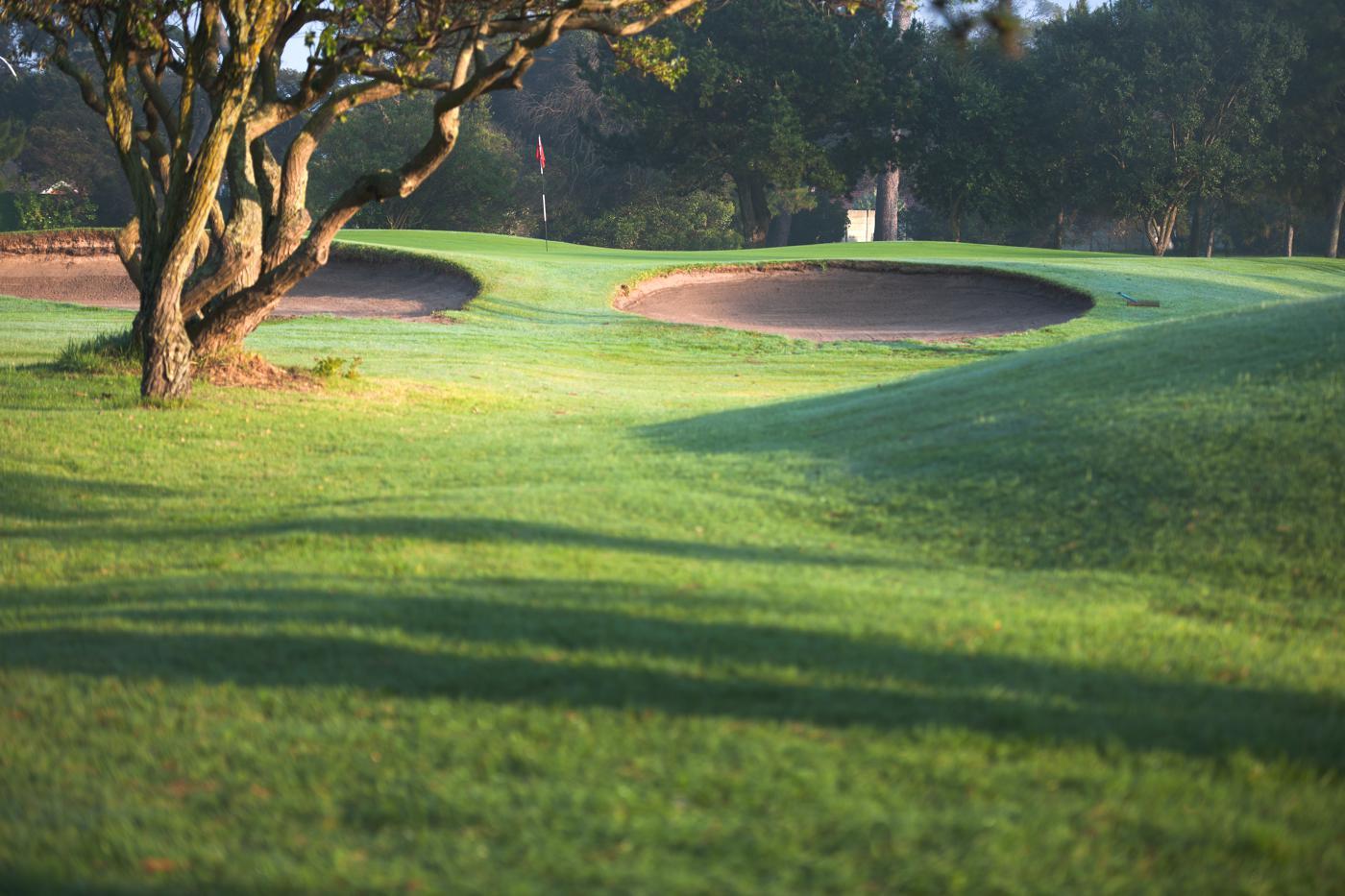 Royal Cape Golf Club-16629