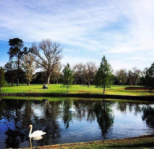 Westlake Golf Club-16815