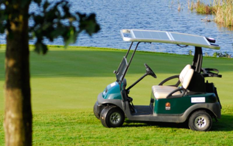 Koksidje Golf-17231